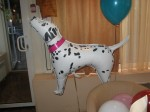 собака Далматинец из фольги 75см