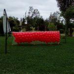 запуск гелиевых шариков из сетки