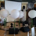 шарики больших размеров надутые гелием, 250грн/шт. (без веточек)